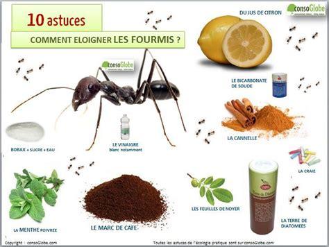 comment se d饕arrasser des fourmis dans une cuisine anti fourmis ants jardin plantes et astuces