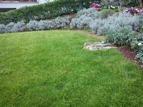 creare un bel giardino come ricavare un bel giardino da un modesto terreno in
