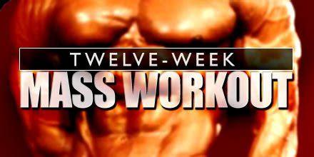 bodybuilding mass gain programs articles twelve week mass workout bodybuilding com