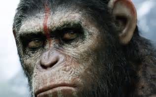 awn of the planet of the apes of the planet of the apes 2014 wallpapers hd wallpapers