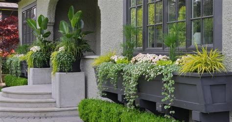 Front Door Potted Plants Container Gardening Ideas Landscape Traditional With Potted Plants Front Door Potted Plants