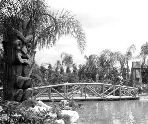 tiki gardens indian rocks florida 100 best tiki gardens florida images on