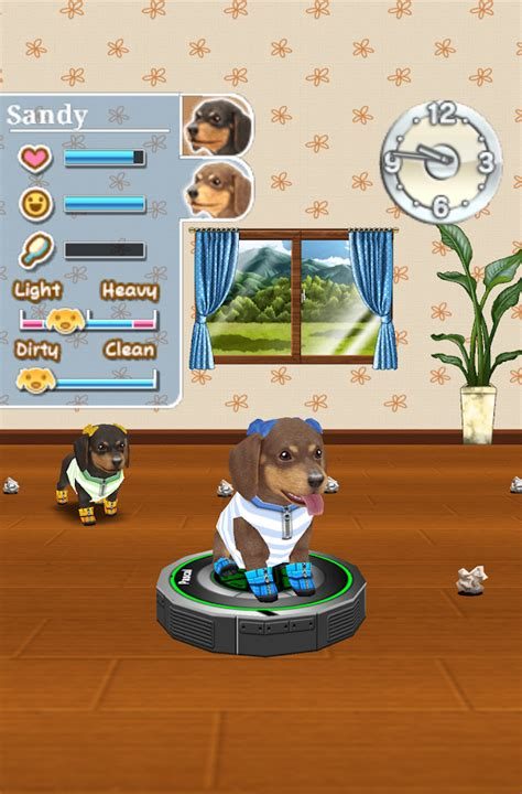 android themes room my dog my room android apps on google play