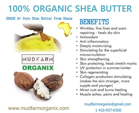 Shea Butter Benefits by Where Exactly To Buy 100 Grade A Organic Shea Butter In