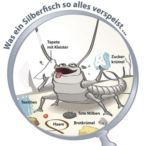 silberfische in der ganzen wohnung silberfische bek 228 mpfen warum silberfische im bad ein