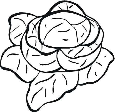 coloring sheets for vegetables free coloring pages of cauliflower