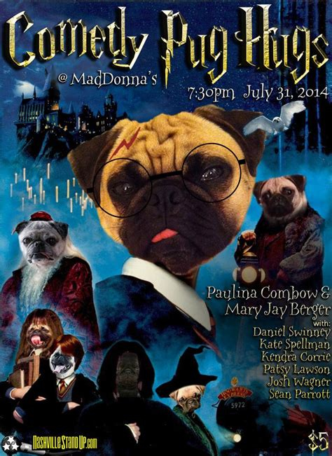 pug harry potter pug paulinacombow
