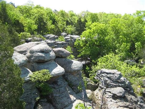 Garden Of The Gods Shawnee National Forest by Camel Rock At Garden Of The Gods Picture Of Shawnee