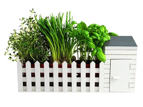 indoor garden allotment gift set 15 gifts for 50 absolute