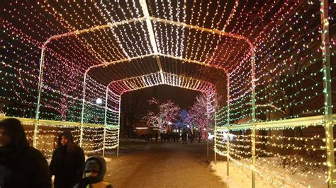 chicago date idea lincoln park zoo lights then pizza