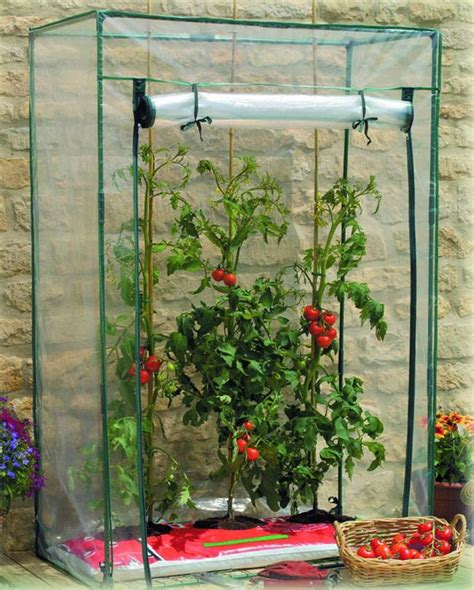 can i build a greenhouse in my backyard can i build a greenhouse in my backyard greenhouse gardening in the pacific northwest