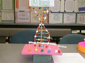 Handmade Science Models - 32 best images about dna on models lego and