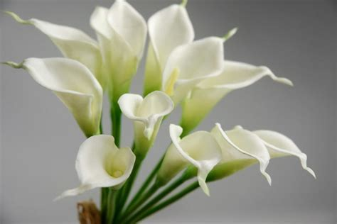 """Mini Real Touch Calla Lily Wedding Bouquet in White  14"""" Tall"""