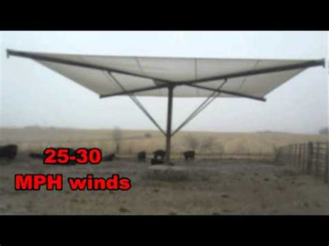 cattle and livestock shade | shade all youtube