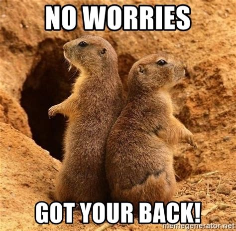 I Got Your Back Meme - no worries got your back i ve got your back meme