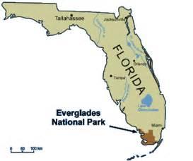 everglades national park florida map ecoscenario everglades national park