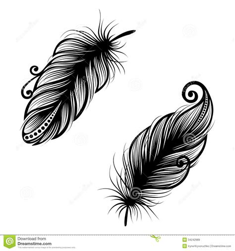 feather tattoo vector top feathers vector images for pinterest tattoos