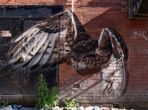 images  owl street art graffiti uil straat