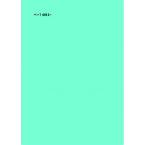 mint green pack of 5 mint green dyslexia overlays read123