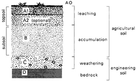 diagram of a soil profile soil profiles tocal college