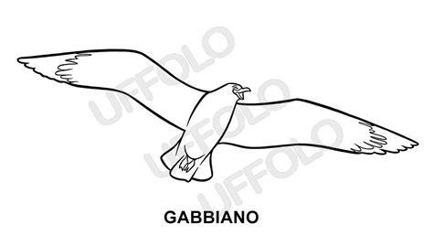 disegno gabbiano disegni immagini da stare e colorare uccelli e