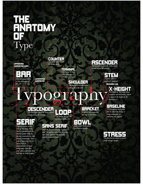 typography anatomy poster the anatomy of type poster digital graphic design