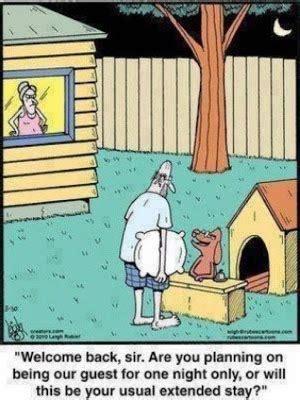 Funny Husband Dog House Hotel Cartoon Funny Joke Meme Pictures