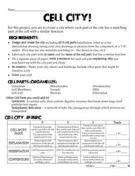 Looking Inside Cells Worksheet Answers by Cell City Worksheet Answers Photos Getadating
