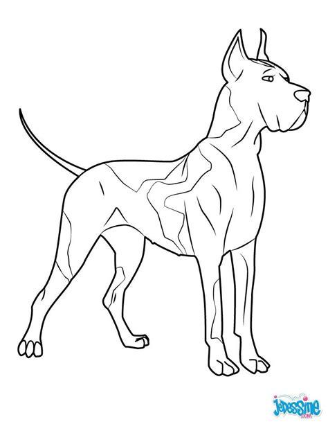Coloriage d'un chien, un beau dogue allemand. Idéal pour