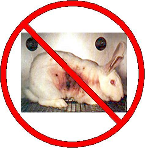 test animali animal testing animal testing