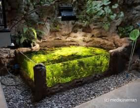 Indoor Pond 25 Best Ideas About Indoor Pond On
