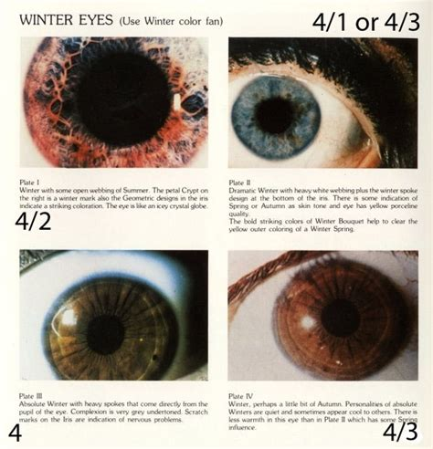 eye pattern analysis ppt 17 best images about deep winter soft on pinterest