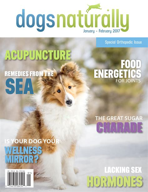 dogs naturally dogs naturally subscription 25 dogs naturally magazine