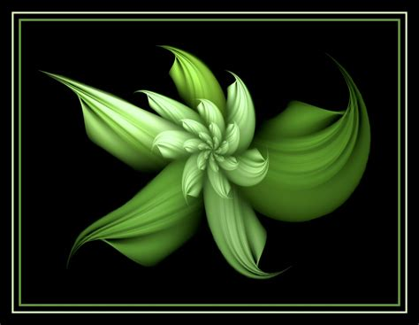 wallpaper of green flowers 10 pictures of green flowers high resolution wallpapers