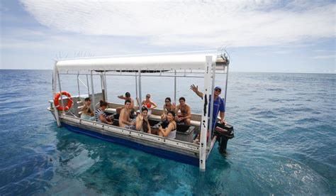 cairns glass bottom boat reef tours skydive