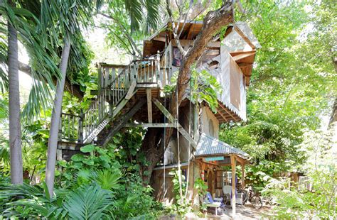 tree house airbnb airbnb treehouses miami vacation rental treehouse and organic farm 1 thecoolist