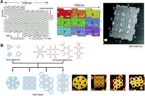 Dna Origami Applications - dna origami technology for biomaterials applications