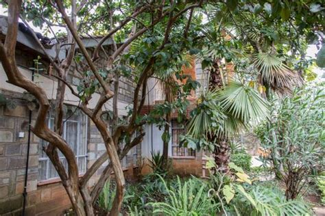 Pine Tree Gardens by Pine Tree Gardens Eldoret Updated 2017 Guesthouse
