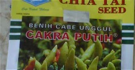 Benih Cabe Rawit Putih Pedas cabe rawit unggul cakra putih bibit unggul