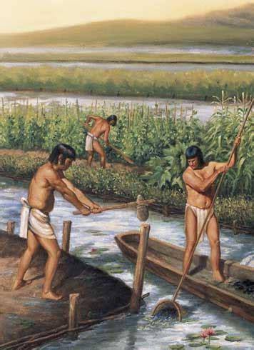 imagenes agricultura maya cultura maya agricultura y ciudades mayas
