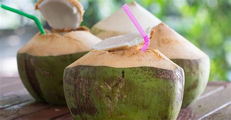 Coconut Water Detox Weight Loss by Coconut Water For Detox Weight Loss
