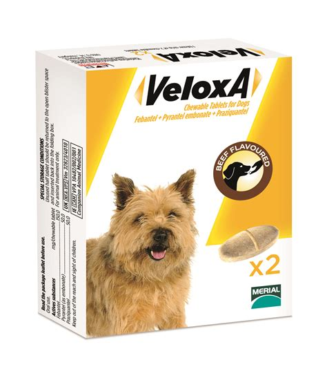wormer for puppies veloxa wormer for dogs