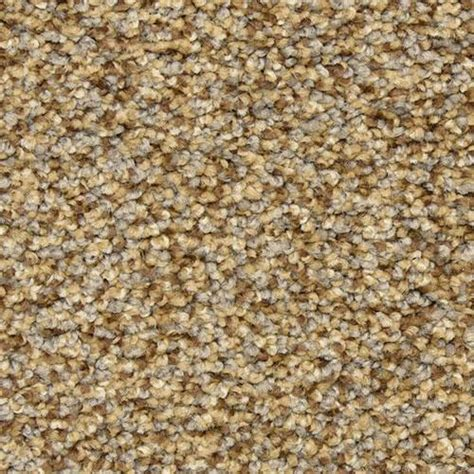 Dixie Home by Buy Dixie Home Colorworks Carpet