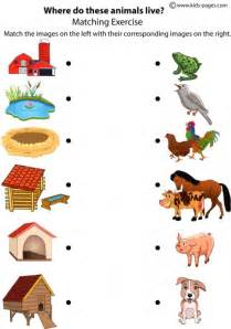 does la colors test on animals animals shelters worksheet