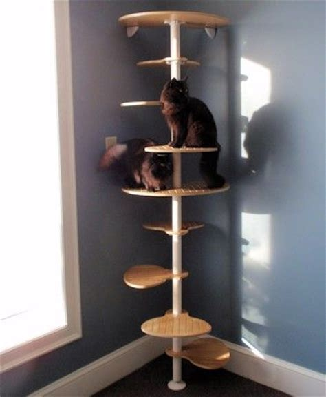 10 foot floor to ceiling cat tree 107 best images about cat furniture on