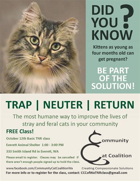 Trap Neuter Return ccc home community cat coalition