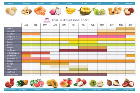 fruit by season fruit season chart thailand overview of fruit production
