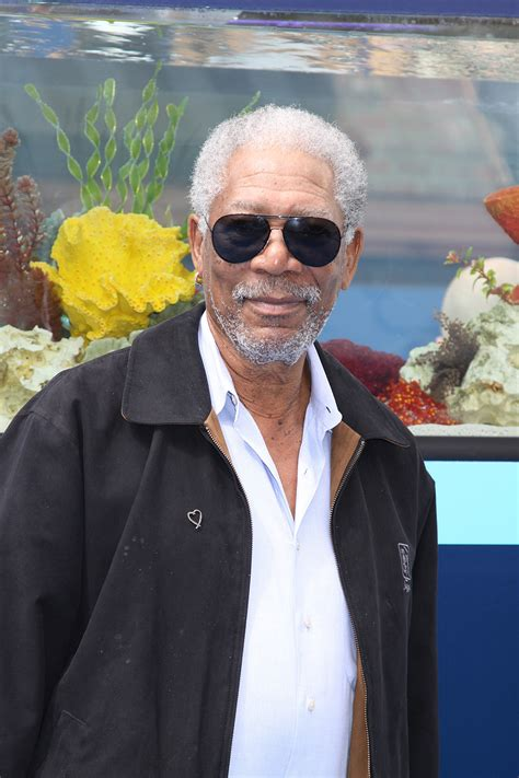 freeman in dolphin tale exclusive photos from the dolphin tale world premiere