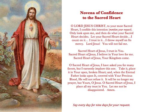 forgiving a marian novena of healing and peace books sacred novena catholic prayer cards