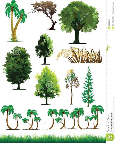 imagenes de flores y arboles silhouette view of trees plants grass wildlife stock